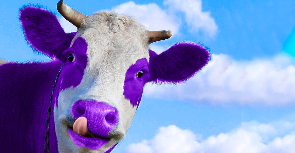 """Foto - Você tem uma """"vaca roxa"""" na sua empresa?"""